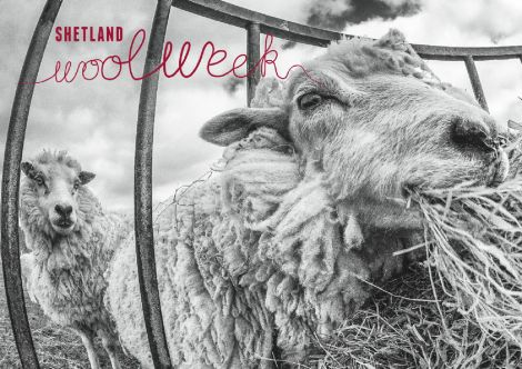 Shetland Wool Week - Photo: Dave Wheeler