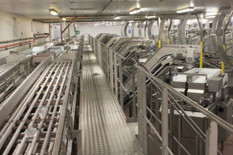 Shetland Catch's new packing line - Photo: Shetland Catch.