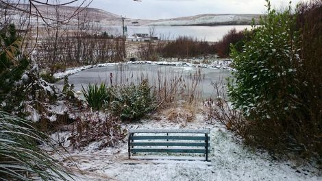 A dusting of snow.