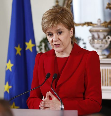 "Sturgeon won overwhelming parliamentary support for her motion to ""explore options for protecting Scotland's relationship with the EU"" after she made clear it did not authorise a second independence referendum."