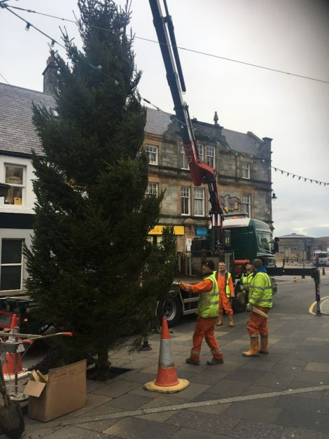 council workers erecting this year's Christmas tree at Lerwick's Market Cross - Photo: SIC