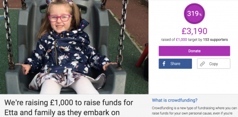 A screenshot of the fundraising page taken on Friday afternoon.